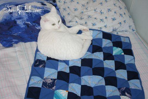 Blue_kate_quilt