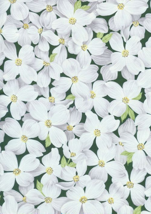 Timeless Flower Garden Dogwood Blooms Green