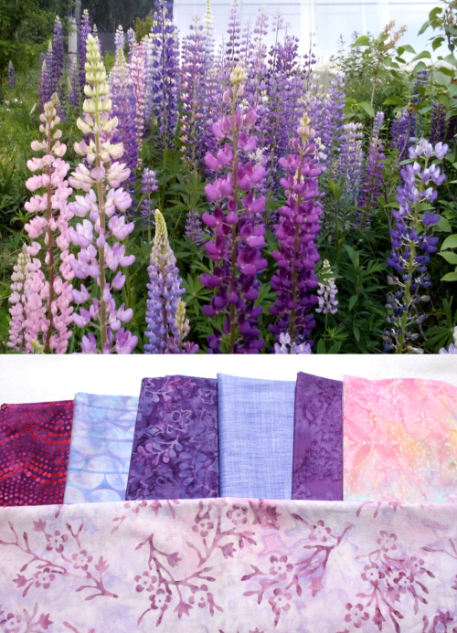 Lupins_collage_2